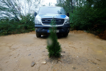 A tree planted by protesters in front of a police car is seen in a forest near Kerpen-Buir