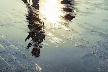 Silhouette of a person reflecting in a puddle after the rain. Fotomurales