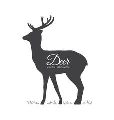 Vector illustration: Black silhouette of Deer isolated on white background.