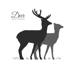 Vector illustration: Silhouette of two Deer isolated on white background.