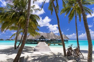 Fototapete - インド洋の美しいサンゴ礁の海