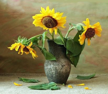 sunflowers in vase on artistic background