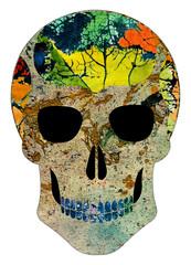 Art Abstract Skull. Hand painting and make graphic.