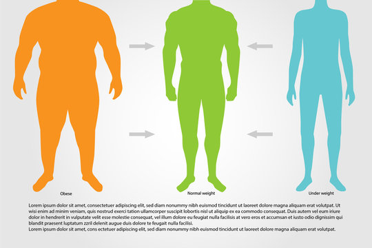 BMI or Body Mass Index Infographic Chart.Vector illustration.