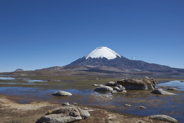 Photo sur Plexiglas Reflexion Snow capped Parinacota Volcano, 6,324m high, reflected in Lake Chungara on the Altiplano of northern Chile.