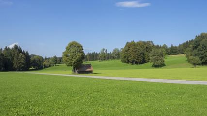 Paysages champêtres de Bavière. Vues sur les collines, prairies verdoyantes et pâturages autour du village de Hundham dans la vallée du Leitzach au pied du Schwarzenberg.