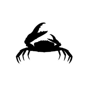 Crab icon, silhouette, logo on white background