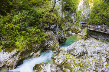 Vintgar gorge, Slovenia, Beautiful environmental place