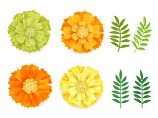 Decorative orange, green yellow marigolds and leaves , symbol of mexican holiday Day of dead isolated on white background.Realistick flowers vector illustration