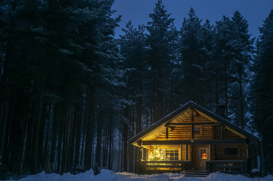 A lonely house in a pine forest in winter