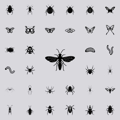 flying ant icon. insect icons universal set for web and mobile