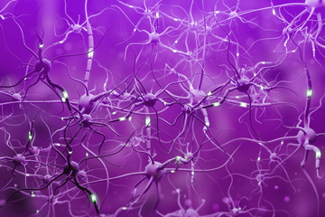 Fototapete - Purple neurons with glowing segments over purple