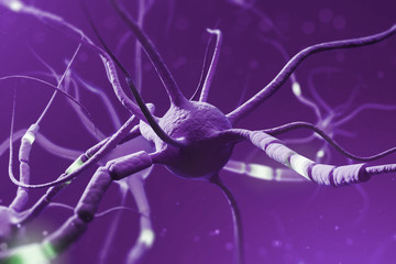 Fototapete - Purple glowing neurons over purple background