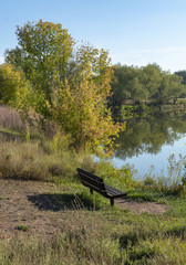 Wooden Bench by Pond with Colorful Cottonwood Trees