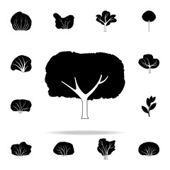 apple tree icon. Plants icons universal set for web and mobile