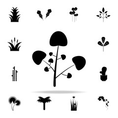 watercress icon. Plants icons universal set for web and mobile