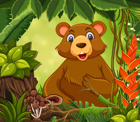 A cute bear in forest