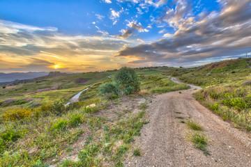 Wall Mural - Rural Road through Mediterranean landscape