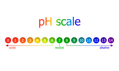 Vector pH Scale Scheme, Rainbow Colors, Isolated on White Background Illustration.