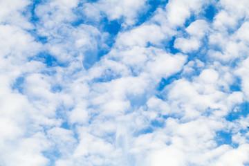 White altocumulus clouds layer in blue sky