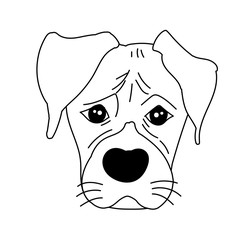 Monochrome boxer dog cute head and expression face - Vector hand drawn illustration isolated on white background
