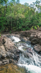 River stream in a tropical rain forest