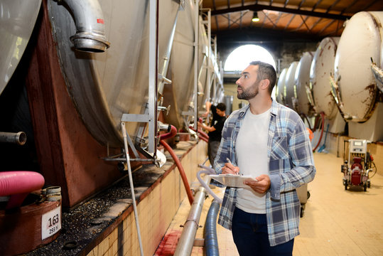handsome man winemaker in a winery wine cellar during harvest season with stainless steel vats in background