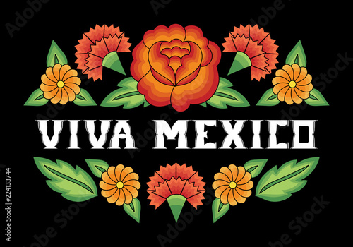 Viva Mexico, illustration typography vector  Traditional