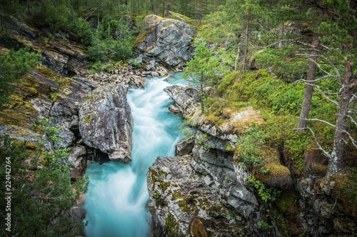 Wall mural Scenic Alpine Creek