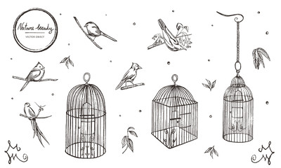 Vector illustration. Chalk style vector set. Birds and cages.