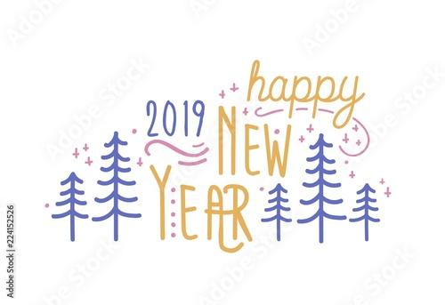 Happy New Year 2019 phrase handwritten with elegant cursive font ...