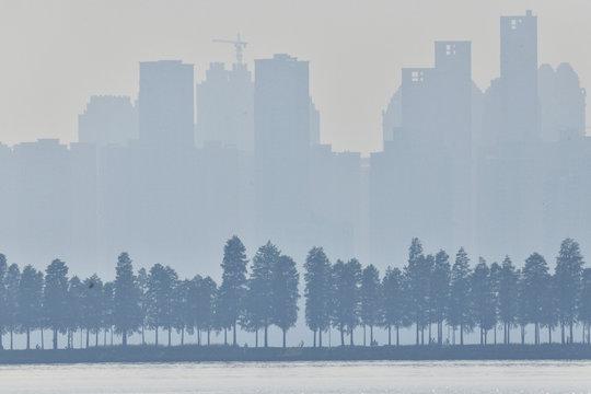 East lake Greenway Park Wuhan