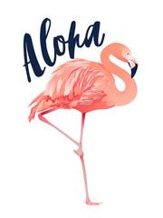 Aloha flamingo illustration. Style Isolated on White Background.