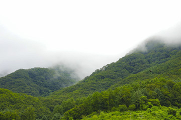 Green mountain and rain cloud for natural background
