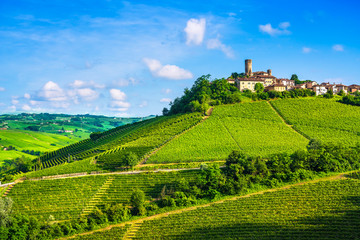 Langhe vineyards sunset panorama, Castiglione Falletto, Piedmont, Italy Europe. Wall mural