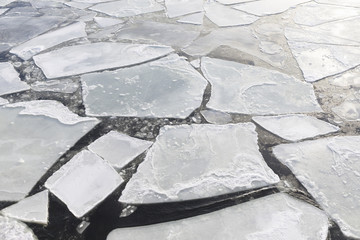 Pieces of ice in a cold sea at winter