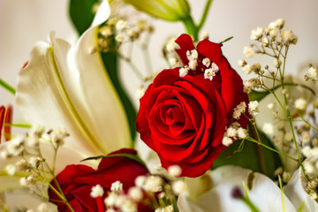 festive bouquet of roses and lilies in red and white colors