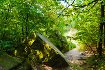 Rocks in the Forest of Ciężkowice, Poland