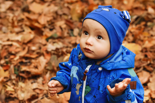 Surprised little kid in blue hat and jumpsuit standing in park questioning or asking about something. Fallen autumn leaves in background. Room for text