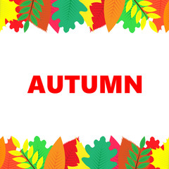Autumn banner with multi-colored leaves