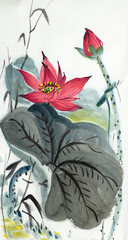 bright lotus flower