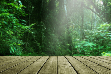 Wooden table and blurred green forest background.