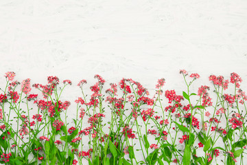 Beautiful Nature Spring Floral background with copy space