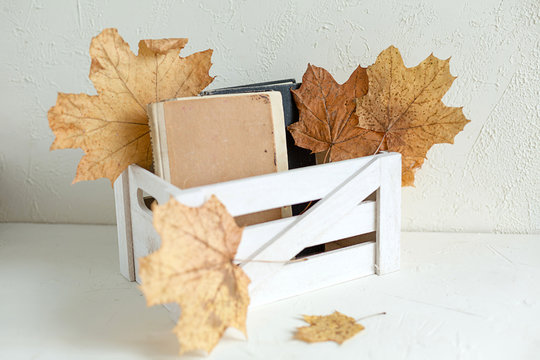 Vintage,old books in a white wooden box,isolated