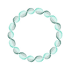 DNA circle. Vector. Isolated.