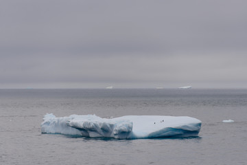 In de dag Antarctica Iceberg in Antarctic sea