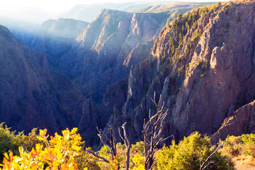 Early dawn light hits the upper cliff walls and bright autumn foliage at Black Canyon of the Gunnison National Park in Colorado