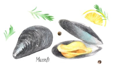 watercolor isolated illustration of seafood: mussels, lemon, spices, rosemary, peppers, drawing by hand of clams and underwater world on white background