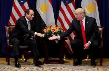 Egypt's President el-Sisi reaches to shake hands with U.S. President Trump during meeting on sidelines of UN General Assembly in New York
