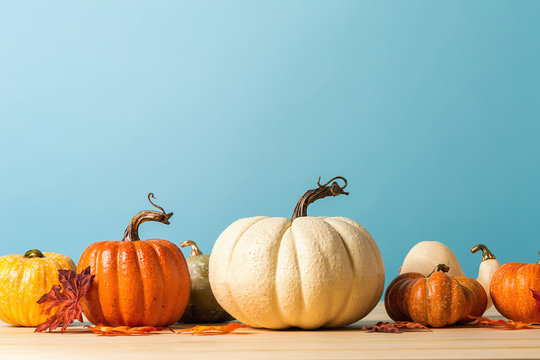 Collection of autumn pumpkins on a blue background